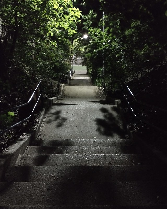 Looking down, Dick Watts Steps #toronto #regalheights #glenholmesteps #dickwattssteps #night #stairs #green