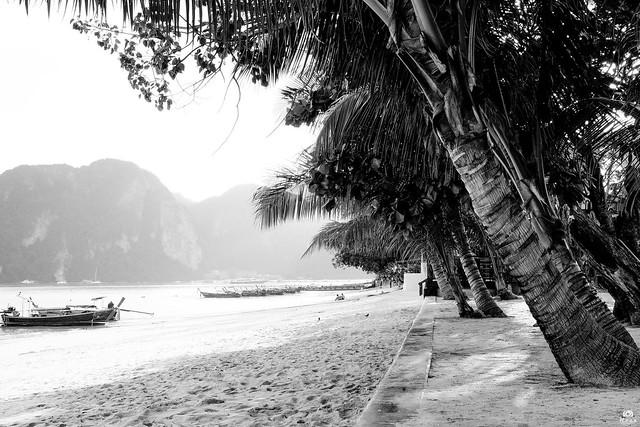 Koh Phi Phi island beach - Thailand