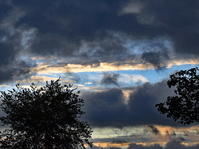 Clouds And Trees.