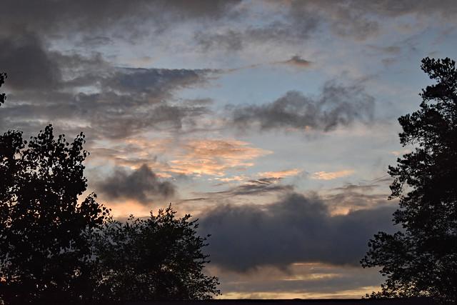 Morning Sky.