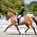 Dressage European Championships 2020 - Pony Individual - Pilisjàszfalu (HUN)