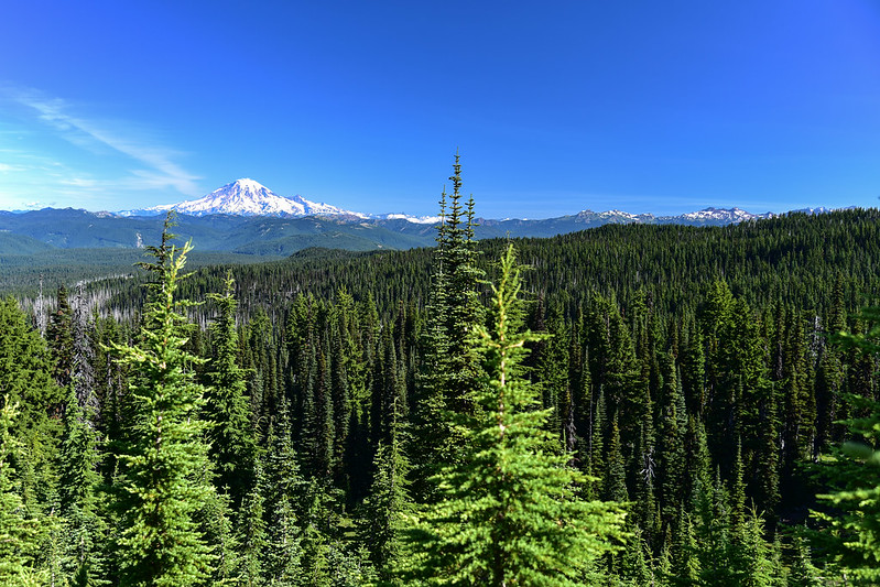 Mt. Rainier and the Goat Rocks