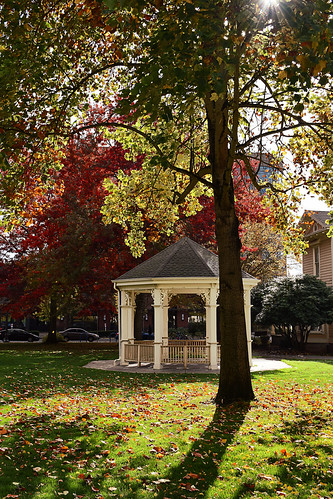 esthershortpark park washingtonstate usa urban city vancouver wa sun gazebo grass fall autumn landscape tree d5300