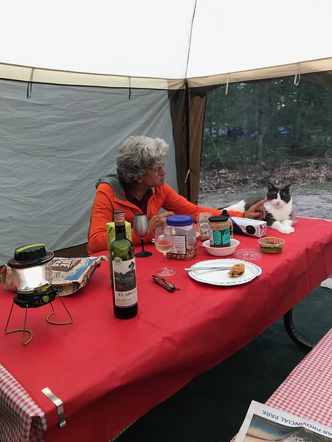 Bonnechere - The dinner table and a cat