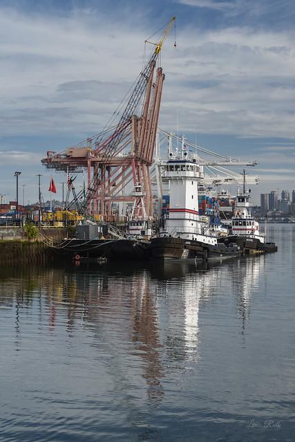 Tug boat lane 2020