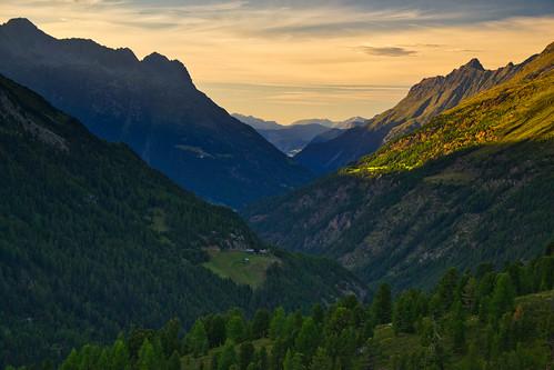 valley mountain mountainside peak tree forest swisspine zirbe light shadow evening sunset alps outdoor landscape serene obergurgl ötztal ötztaleralpen tirol tyrol austria österreich nikond3100 august summer