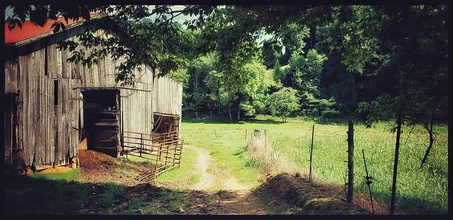 Pray for greener pastures...