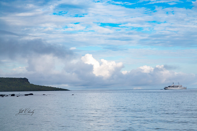 Armchair Traveling - In the Galapagos Islands