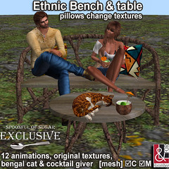Ethnic Bench table set & pillows (change textures)