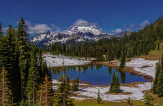 Mt Rainier View from Tipsoo Lake