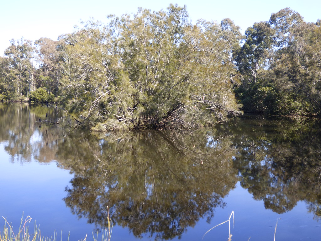 Deepwater Park, Milperra, NSW