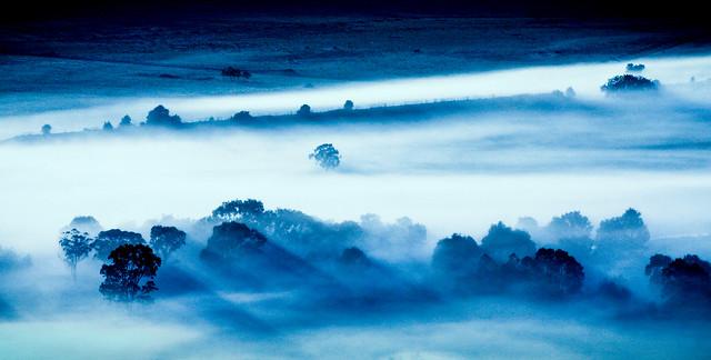 Fog # 18