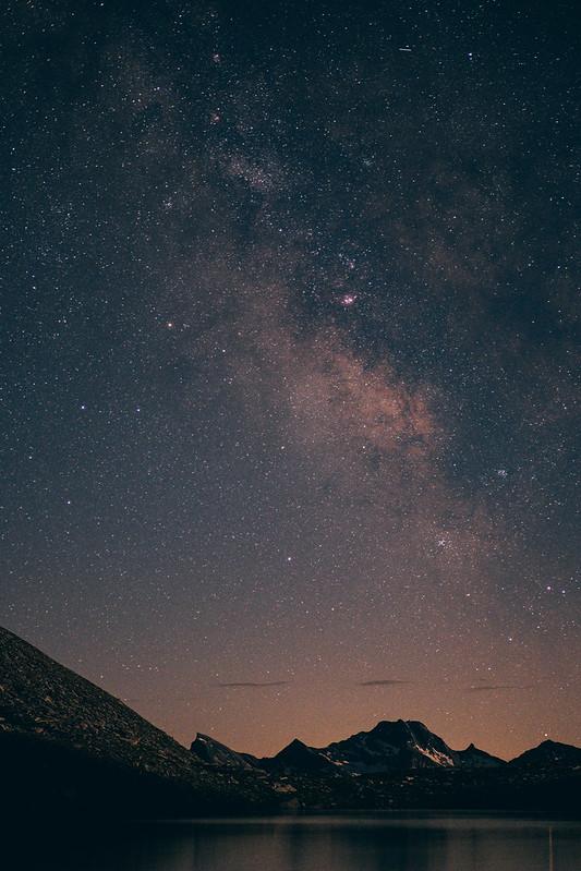 stellata