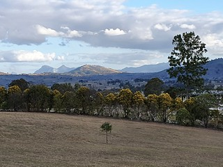 Mt Barney from Boonah