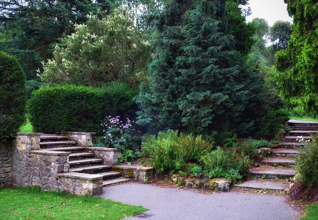 Steps to the Garden