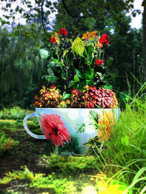 Tasse de fleurs...
