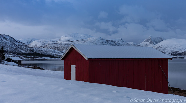 Got to love a red barn in this snowscape