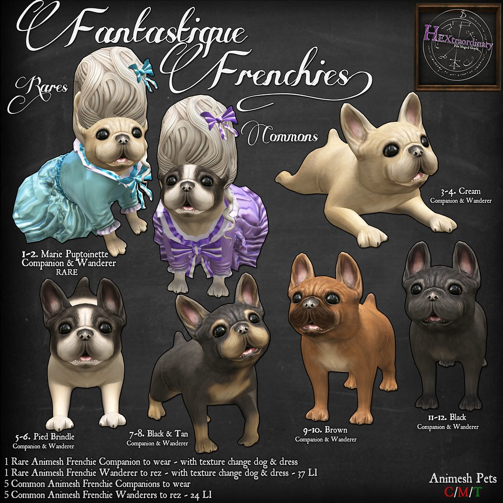 HEXtraordinary – Fantastique Frenchies @ The Arcade