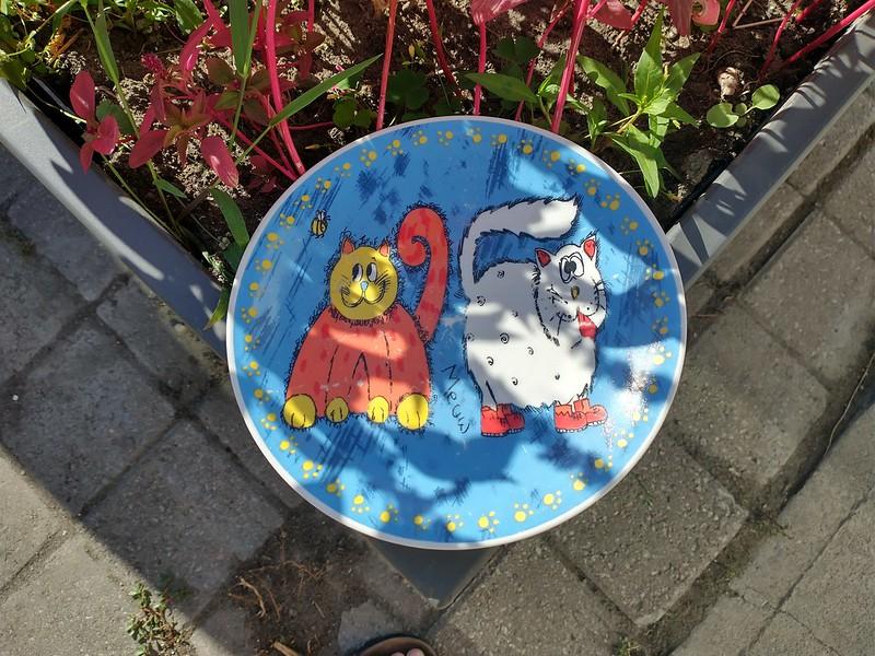 """Meww"" #toronto #dovercourtvillage #dovercourtroad #cats #plate"