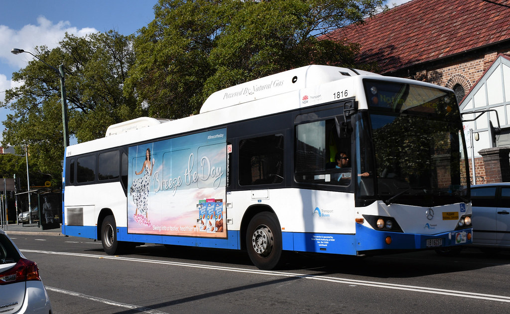 Bus 1816, Leichhardt, Sydney, NSW.