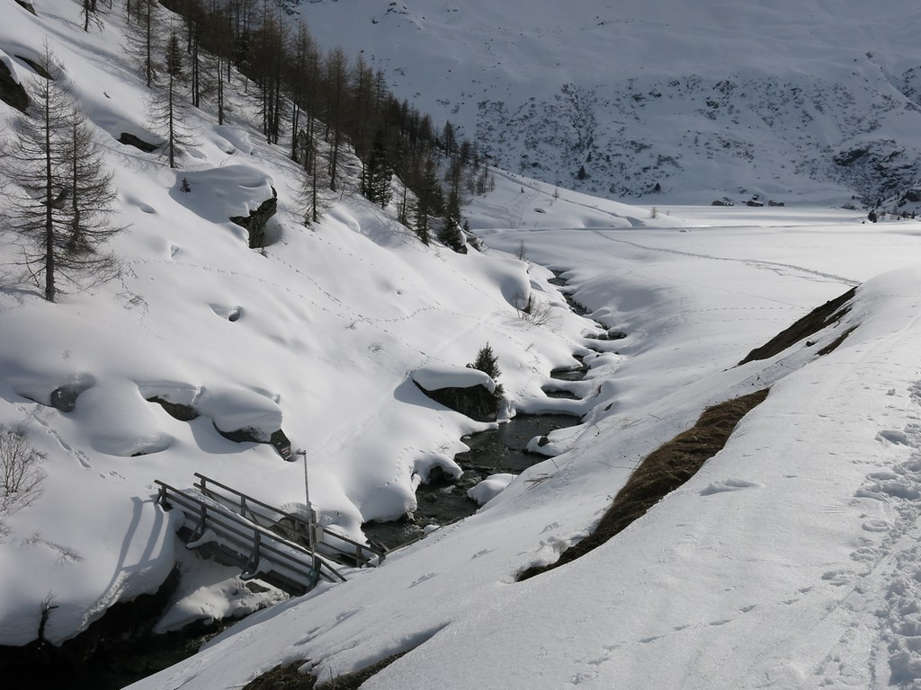 Piz Platta Plattagruppe / Oberhalbstein Switzerland photo 52