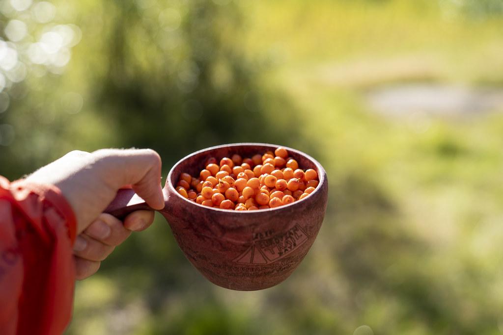 Cuppa Seabuckthorn please!