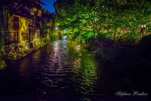 kyoto 24mm sigma nikon japan d800 japon vertjaune eau fleuve light lumiere tokyo arbre nikor riviere photo francais night nuit french france nikkor sunset reflexion