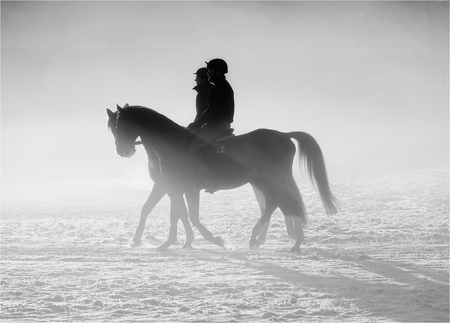 Snow Blind! (Ride the Light)