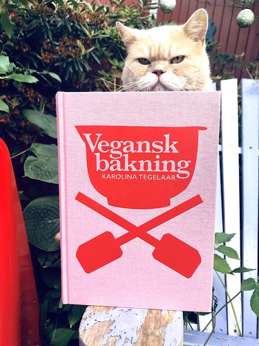 the vegan baking book 2010-2020 💗❤️ and pelle