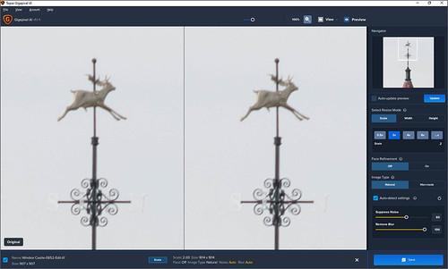 Screenshot of Gigapixel with weather vane image