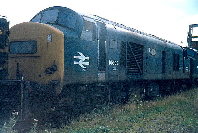 D5909 by Andy Sutton