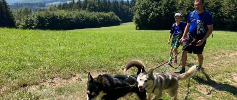 Nejdelší trasa Fryštáckého dogtrekkingu měří 95 kilometrů