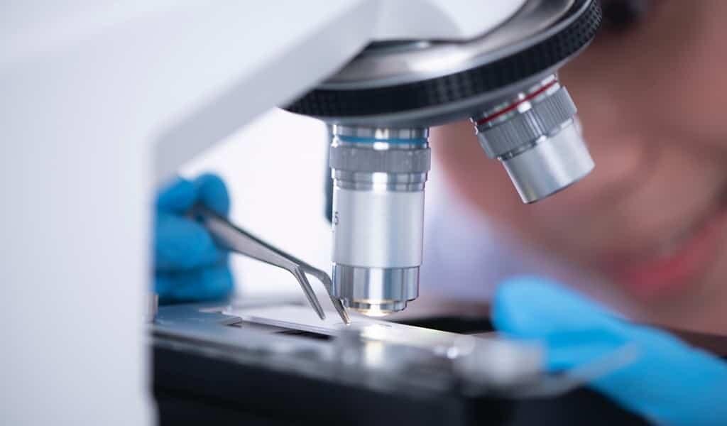 un-composé-qui-inhibe-les-enzymes-liées-au-cancer
