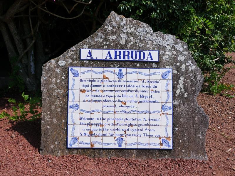 Anases Arruda Azores