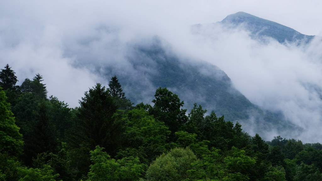 Rainy Day In The Mountains: Soca Valley, Slovenia