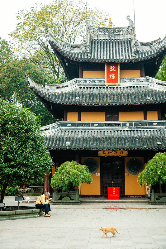 Shanghai, 2016 #0026