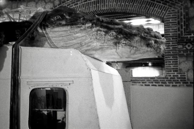 Whale - Olympus XA