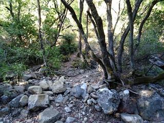 Le sentier d'accès à l'arrivée au ruisseau d'I Scarpi