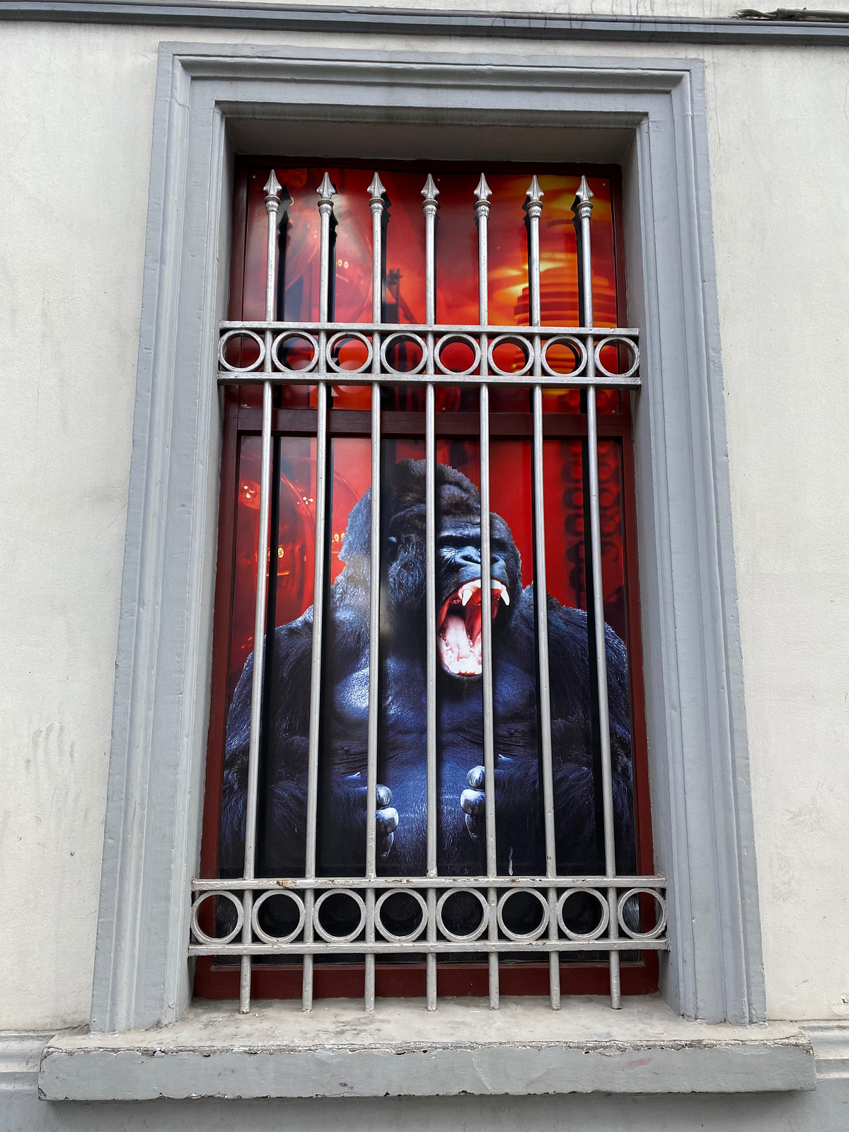 Angry Gorilla in a cage!