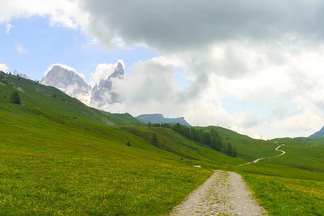 Landscape of Dolomites in Venegia valley at summer