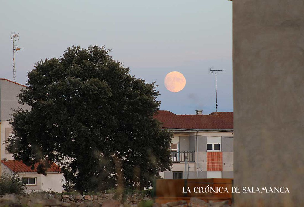 luna_llena-(8)
