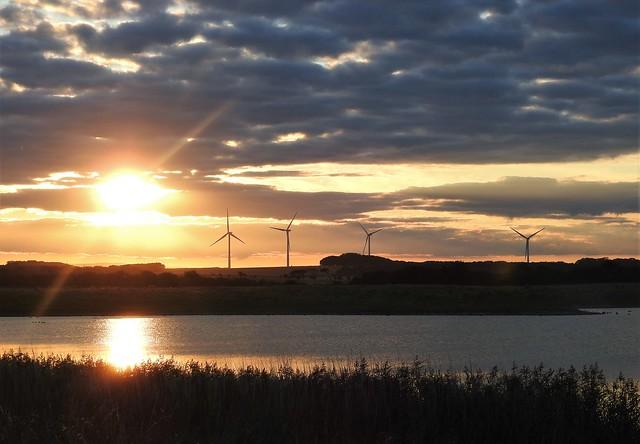 Sunset Reflection - Cresswell Ponds
