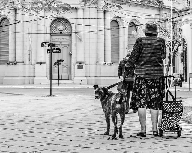La dama de los perros // The Lady of the dogs (B&W)