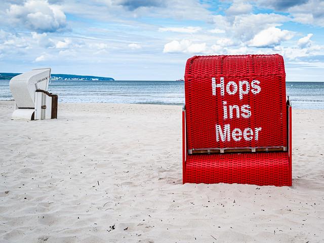 Hops ins Meer