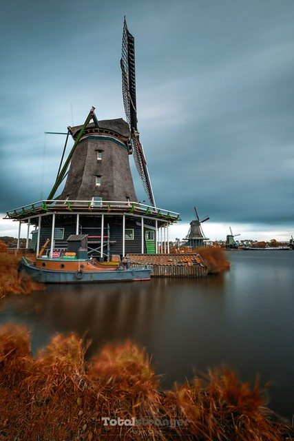 Indian Zaanse Schans