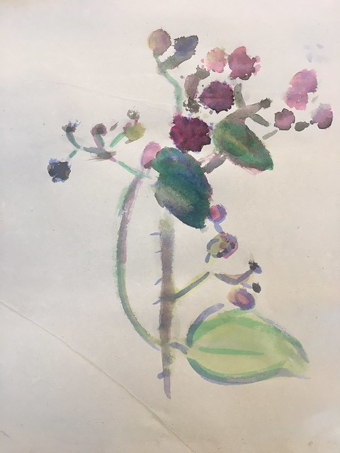 20-21 Flora Danica