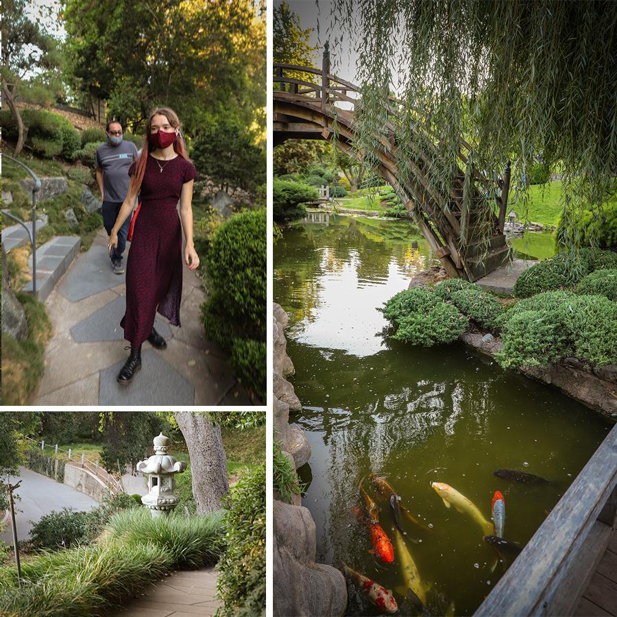 Japanese-Garden-at-Huntington-Botanical-Gardens-1