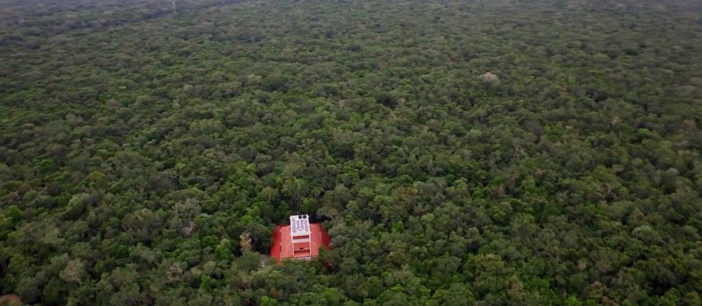 Los Árboles Tulum