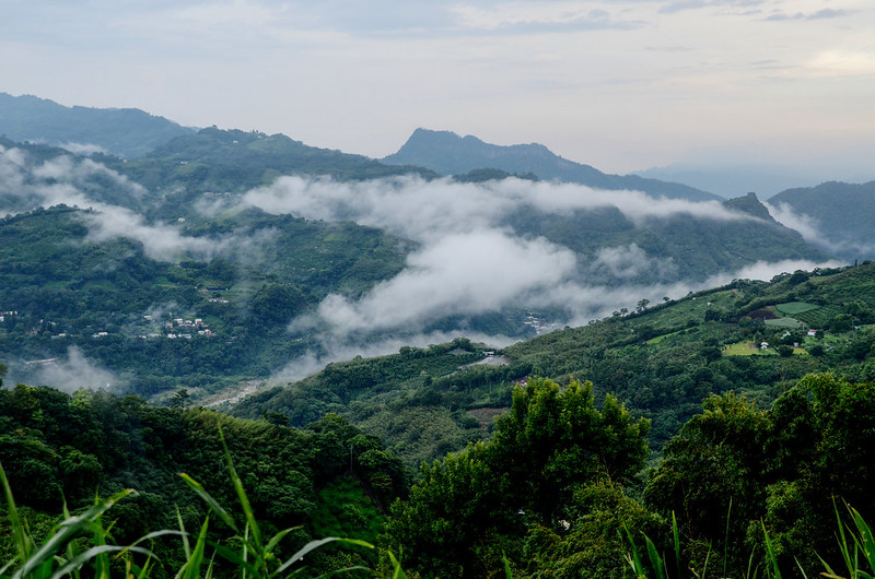 雨後的泰安山區 (3)