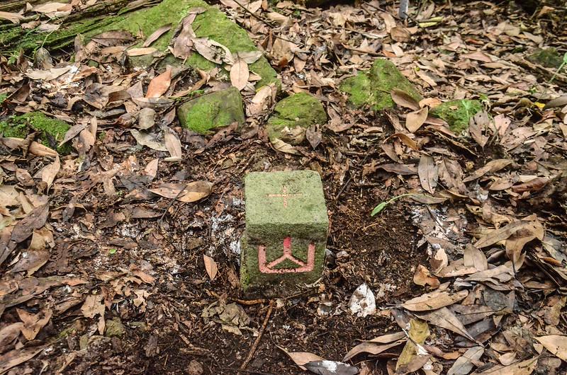 西橫龍山補近(07)的山字森林三角點(Elev. 1090 m) (2)